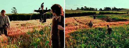 Киноляп: В поле