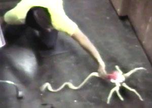 движущийся монстр-паук